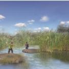 Natuurontwikkeling in Marickenland